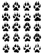 print of dogs paws - stock illustration