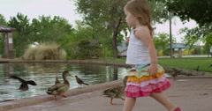 Slow Motion Little Girl Walks Up to a Duck Pond and Feeds the Ducks Stock Footage