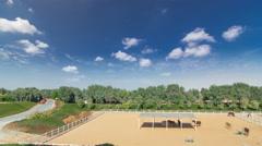 Arabian horse runs inside paddock in the dust desert timelapse hyperlapse, UAE Stock Footage
