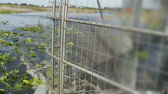 Airboat Ride Looking Back at Motor in Wetland in Slow Motion - stock footage
