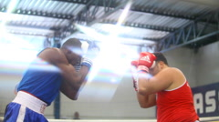Man fighting in ring. Athlete Boxe Sport. Practicing, training. Stock Footage