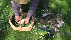 Man placing freshly caught fish in wicker basket Stock Footage