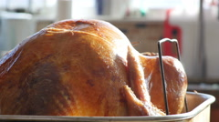 Thanksgiving Turkey Cooked in Pan, 4K Stock Footage