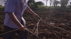 Farmer Plowing The Ground And Whipping Ox - stock footage