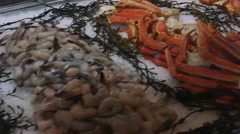 Raw Seafood Crab Legs Shrimp and Oyster on Ice, 4K Stock Footage