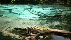 Emerald pool in Thailand (Blue pool), Krabi province. Panning up video Stock Footage