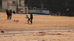 People with dogs walking around the sand beach and taking photos - stock footage