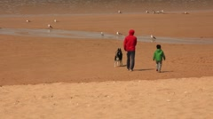 Father and son with dog walking around the sand beach Stock Footage