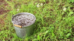 Full bucket of rainwater of the summer Stock Footage