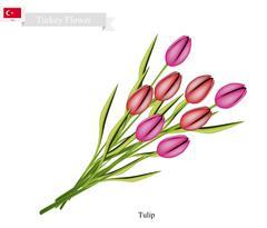 Tulip Flowers, The National Flower of Turkey - stock illustration