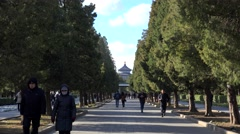 Temple of Heaven park with the Hall of Prayer on background. Beijing, China Stock Footage