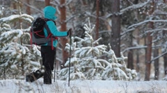 Traveler with a backpack and hiking sticks. Stock Footage