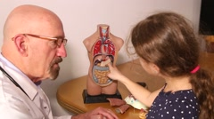 Stock Video Footage of granddaughter and doctor grandfather looking at human body torso