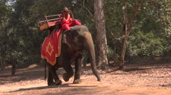 Elephant with mahout in cambodia Stock Footage