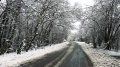 Snowy dirty road in the middle of snowy forest Stock Footage