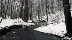 Rivulet with water in snowy forest - stock footage