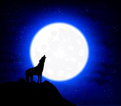 Wolf Howling at the full moon - stock illustration