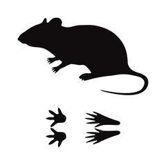 Black silhouette rat mouse wild animal zoo vector Stock Illustration