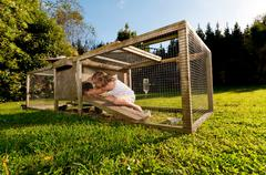 Girl looking for guinea pig in hutch - stock photo