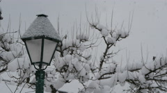 View of a lamp post and a tree covered with snow in Hallstatt - stock footage