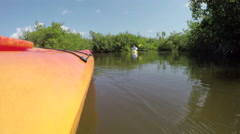 Canoeing behind the tour guide in mangrove forest canals - stock footage
