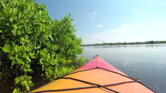 Canoeing on calm waters in lush mangrove jungle forest - stock footage