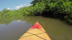 Kayaking through mangrove trees jungle in calm river canal - stock footage