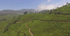 Aerial fast moving shot over tea plantation hills in Munnar, India Stock Footage
