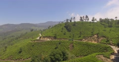 Aerial shot of road alongside tea plantations in Munnar, India Stock Footage