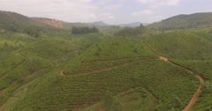 Aerial shot, flying down to touch lush tea plantation in Munnar, India Stock Footage