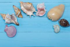 Assorted seashells on blue wooden background, flat lay, copyspace Stock Photos
