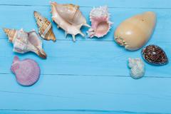 Assorted seashells on blue wooden background, flat lay, copyspace - stock photo
