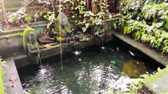 Authentic fountain is in Ubud Monkey Forest,Bali Stock Footage