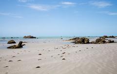 Rocks on sandy beach, Canoa Quebrada, Fortaleza, Brazil Stock Photos