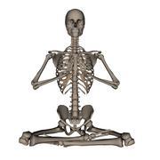 Human skeleton meditation- 3D render Piirros