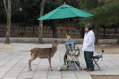Tame deer and snack vendor in Nara Park, Japan Stock Photos