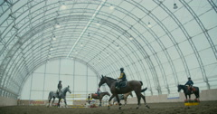 Horses in the arena  Stock Footage