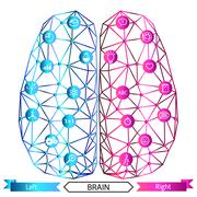 Left and right brain functions concept - stock illustration