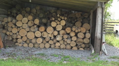 Tracking shot of a wood pile Stock Footage