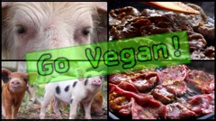 Stop Animal Violence, Go Vegan. Fat Unhealthy Food - Fried Pork. 4K Stock Footage