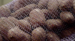 Potatoes packed in sacks - stock footage