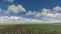 The movement of clouds over the fields of wheat in the vast steppes of the Don. Stock Footage