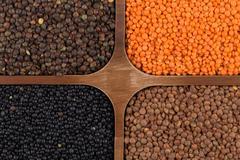 Four varieties of organic bio lentils - stock photo