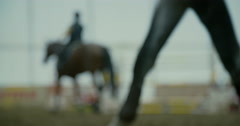 A boy with the horse in the arena Stock Footage
