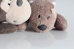 Stuffed animal with bandage on head Stock Photos