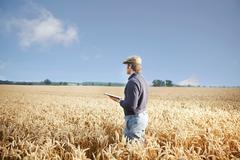 Farmer using tablet computer in field - stock photo