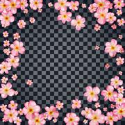 Abstract background with beautiful pink cherry blossom. Stock Illustration