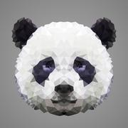 Panda low poly portrait Stock Illustration