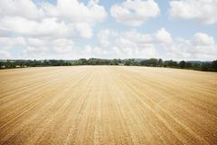 Aerial view in tilled crop field Stock Photos