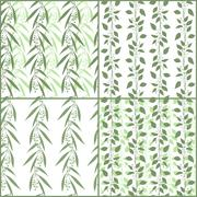 Set of seamless pattern branches of eucalyptus and Camphor laurel. Vector green Stock Illustration